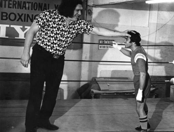 Andre The Giant Professional Wrestler