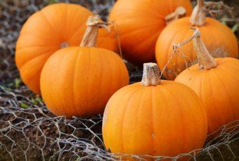 Make The Perfect Pumpkin Bread For Fall